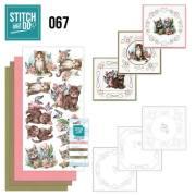 STDO067