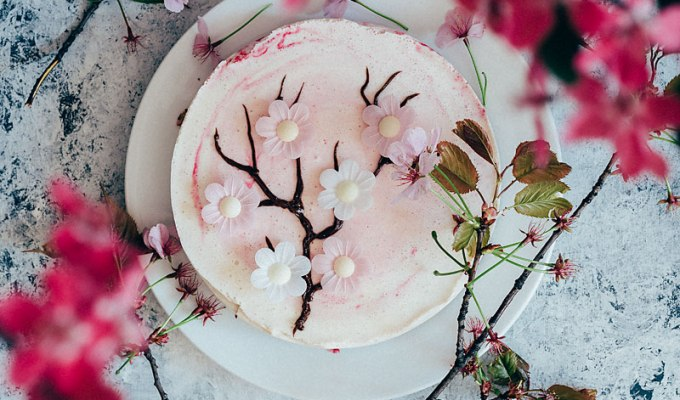 The silent Valley | Japanese Cherry Blossom Cheesecake
