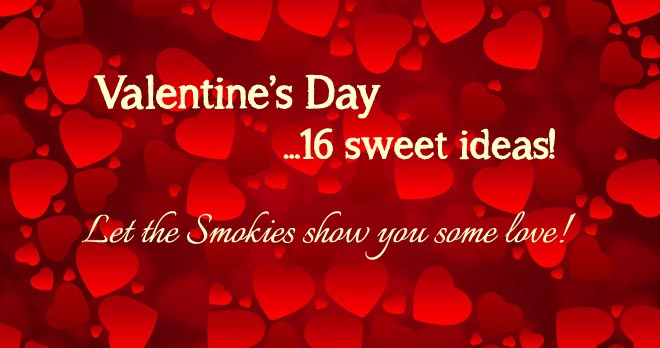 Valentine's Day Ideas Let the Smokies show you some love!