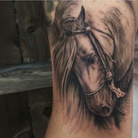 tatuajes-de-caballos-5