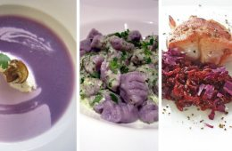 cookbook-of-colors-gewinner-september