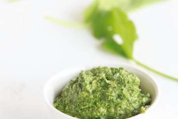 sauerampfer-pesto-2