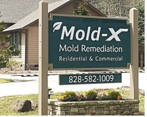 Mold companies in Highlands Cashiers