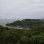 Muir Beach can be seen in the distance from the Coastal Trail