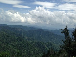 View from Mt. Le Conte