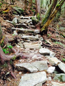 WaterrockKnob steps