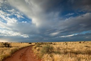 africa road and sky