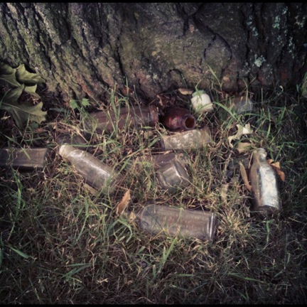 old glass bottles by tree trunk