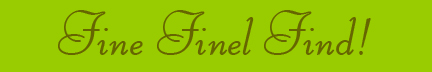 &quot;Fine Finel Find!&quot; blog post banner