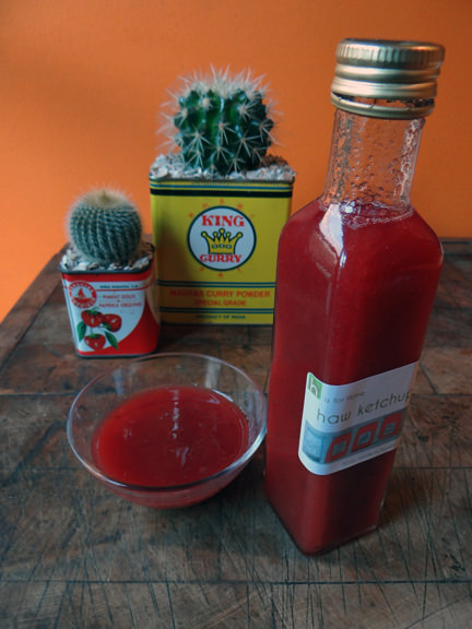 bottle of home-made haw ketchup with pair of small cacti in food tins
