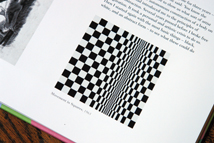 "page from the Bridget Riley catalogue showing ""Movement in Squares"""