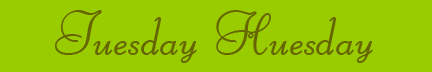 &quot;Tuesday Huesday&quot; blog post banner
