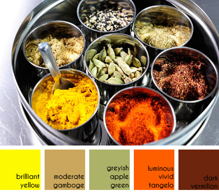selection of curry spices
