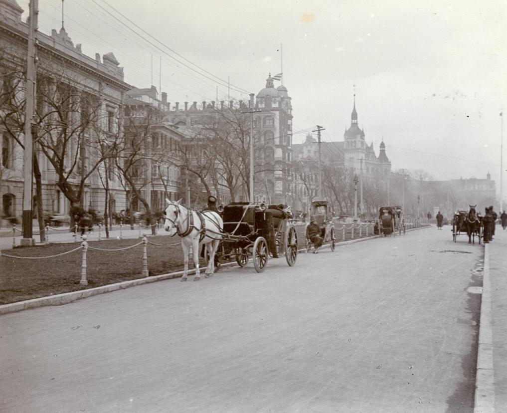 Bund horses 1910-1913