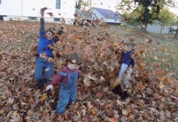 3 fall leaves in MO