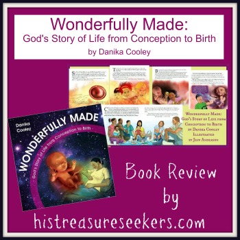 Wonderfully Made Review