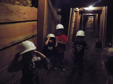 Virginia City mine
