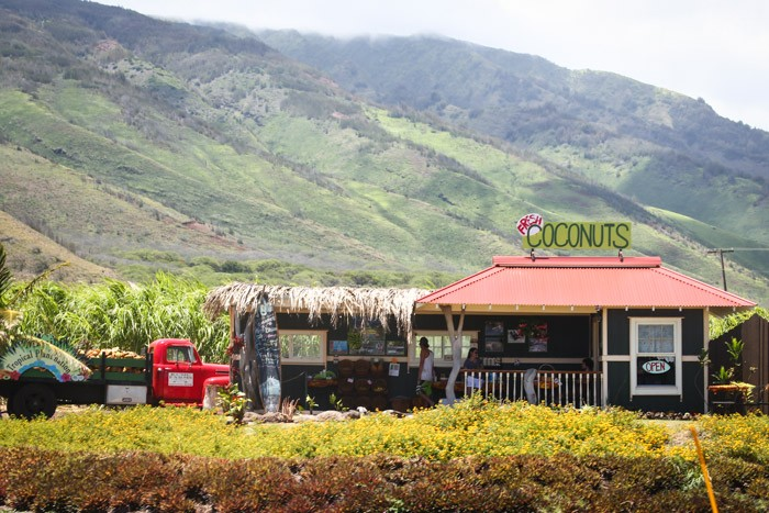 travel  Travelogue: Maui, Hawaii (August 2013)