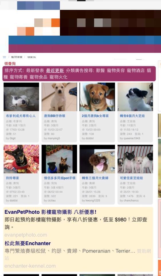 從網上搜尋,許多人在網上買賣動物。 網上圖片