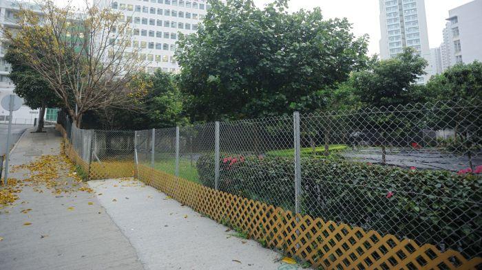 苗圃圍著圍欄,狗隻如何進入令人費解。(葉漢華攝)