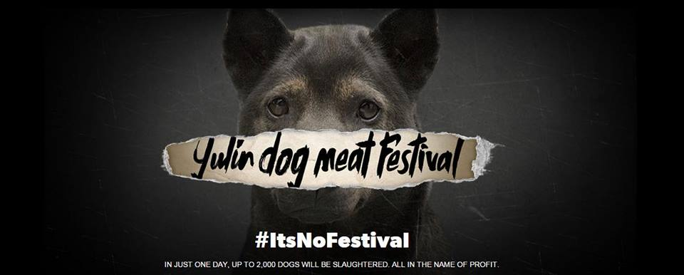 莫文蔚呼籲抵制狗肉節,卻反被內地網民辱罵。 圖片取自莫文蔚facebook