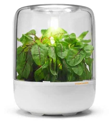 indoor herb grow light