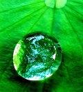 Comment rendre une surface hydrophobe ?