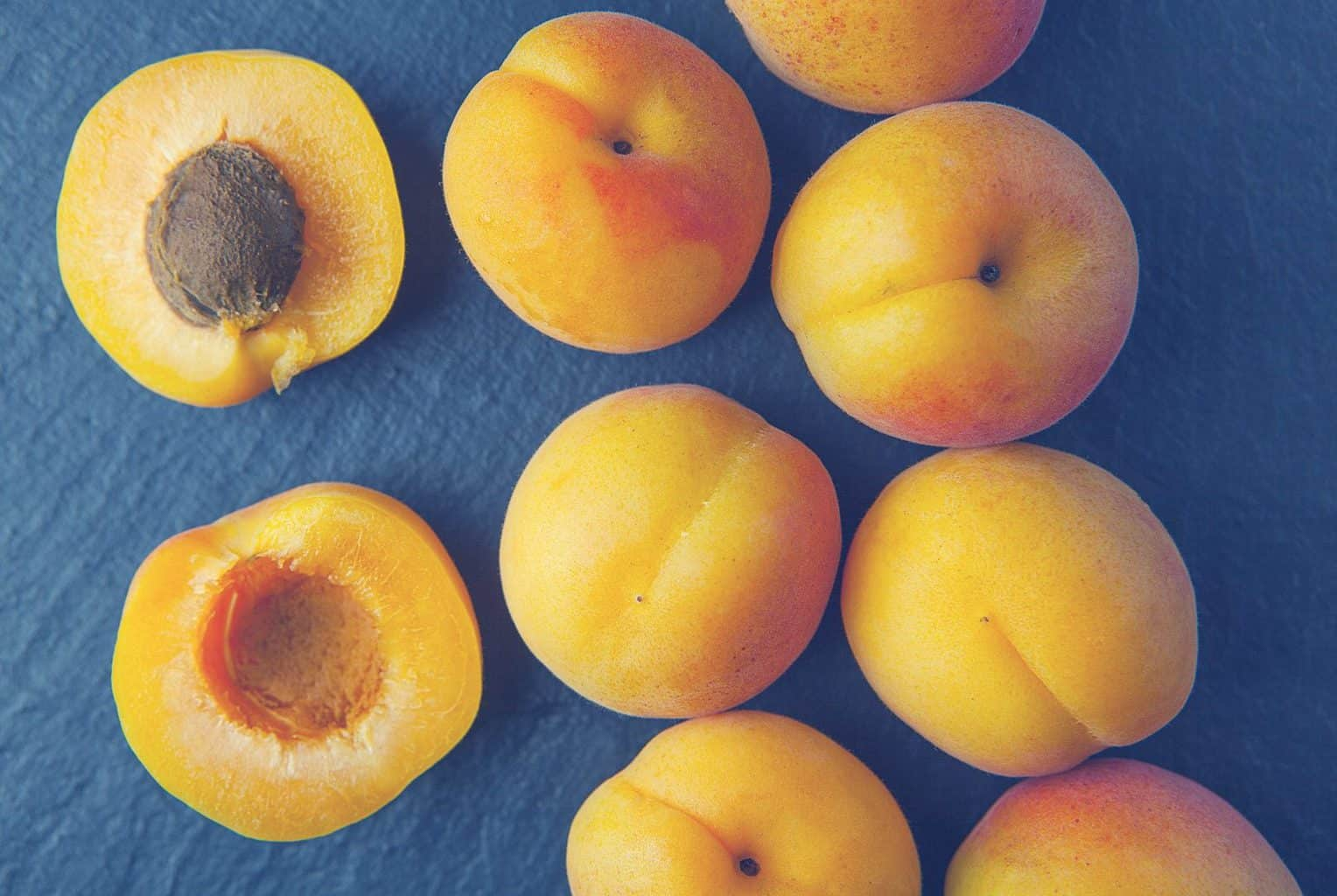 Fullsize Of Can Dogs Eat Apricots
