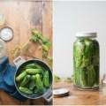 Probiotic Gherkins | HOMEGROWN KITCHEN