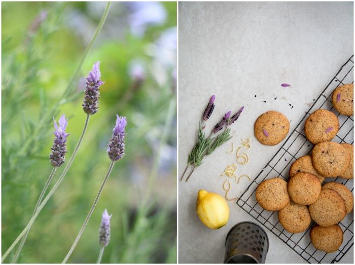 Orange & Almond Cookies | HOMEGROWN KITCHEN