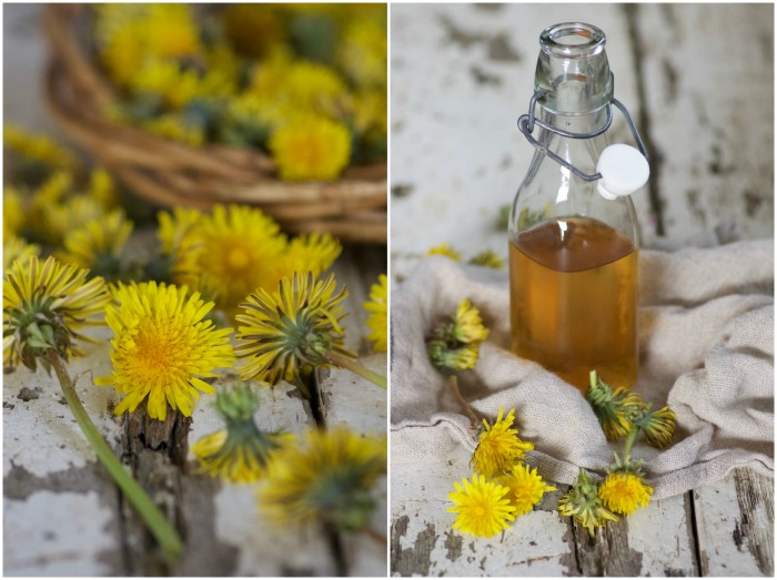 Dandelion Bitters Spring Tonic by Country Kitchen