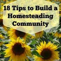 HomesteadCommunity