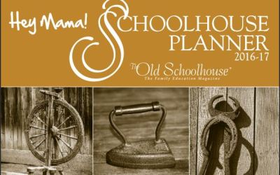 Review: Hey Mama! Print Schoolhouse Planner 2016-2017