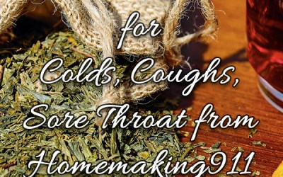 Four Home Remedies for Coughs/Colds/Sore Throats