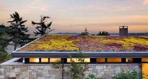 green roof for modern green living_3