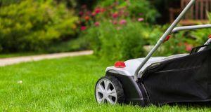 Landscaping Your Garden
