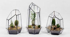 geometric-terrarium