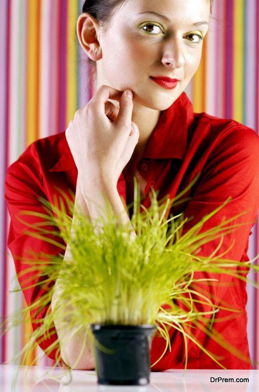 keeping-houseplants-healthy-4