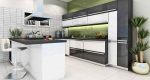 modular kitchen (4)