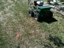 Small Of Gypsum For Lawns