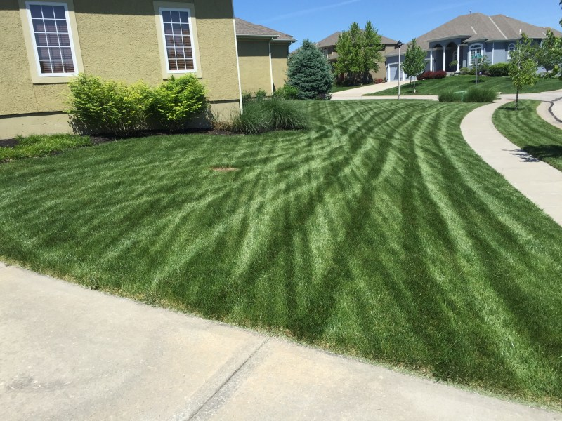 Large Of Lesco Lawn Products