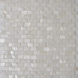 Small Of Mother Of Pearl Backsplash