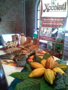 Cacao Fruits and Honduras Chocolate