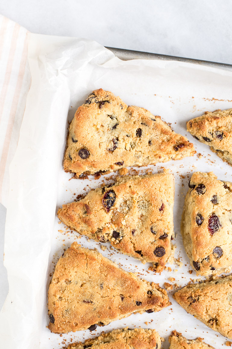 ... scones with chocolate chips. They're paleo, perfectly tender without