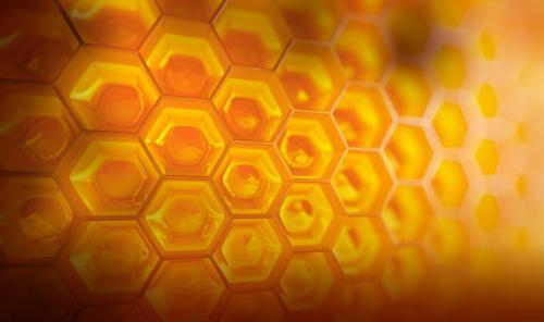 Medium Of Honey House Naturals