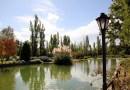 Mendoza: Wine. Mountains. Magic.