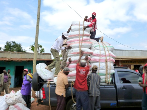 Loading rice on a truck kenya