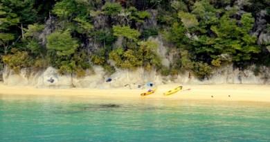 Abel Tasman kayaking