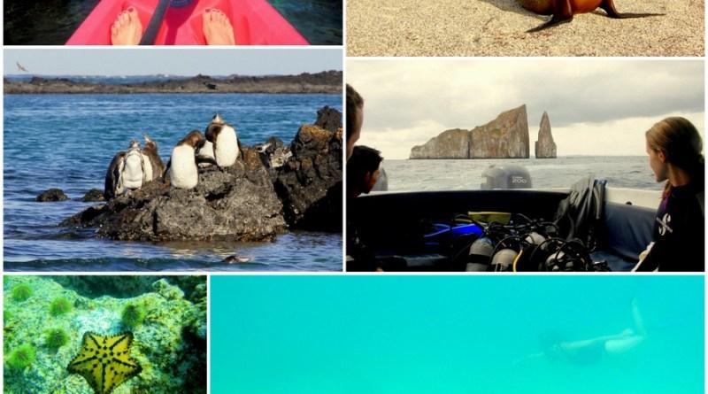 Galapagos by Kayak