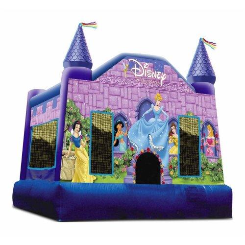 Medium Crop Of Disney Princess Castle